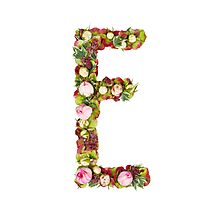 Capital Letter E Part of a set of letters, Numbers and symbols  Photographic Print