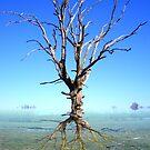 Tree Mirage by stephenmakesart