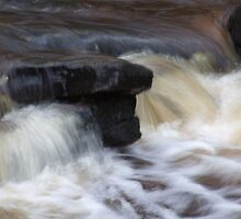 face in the river by oakes deary