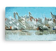 White Pelicans and Black Cormorant Abstract Impressionism Canvas Print