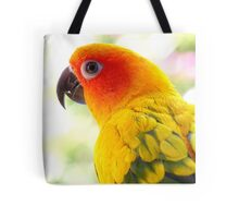 Surly! Not another Photo! - Sun Conure - NZ Tote Bag