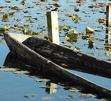 Sunken canoe by peperkoorn