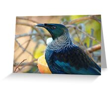 An Outfit Is Incomplete Without A LaCie Collar - Tui - NZ Greeting Card