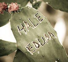 Hale Eduan by Colin Tobin