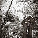 Newtown Cemetery by Rossman72