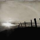 fence by Daphne Kotsiani