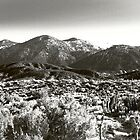 The San Gabriels by ArieDee