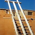 Ladder in the desert by sasjacobs