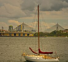 View to Anzac Bridge by Rosalie Dale
