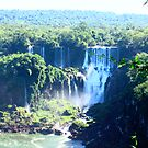 Iguazu by VirgiMax Designs