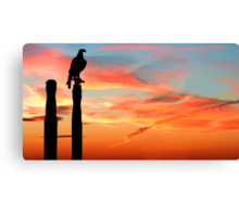Perched Eagle at Sunset Canvas Print