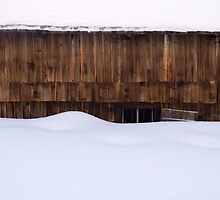 Snowed In by Walter Quirtmair