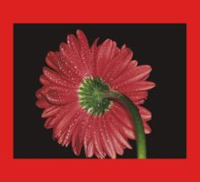 Red Gerbera Daisy Kids Clothes