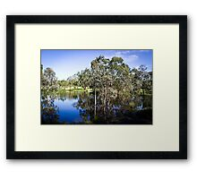 Trees reflected at Dunkeld Community Park, Victoria Framed Print