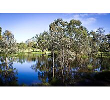 Trees reflected at Dunkeld Community Park, Victoria Photographic Print