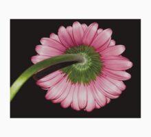 Pink Gerbera daisy Baby Tee