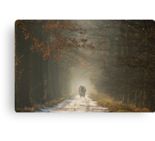 Cycling in paradise Canvas Print