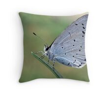 Holly Blue Throw Pillow
