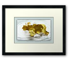 climate change - hippo with bird Framed Print