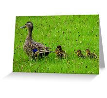 Come on Kids Move Along! - Mallard Ducks - NZ Greeting Card