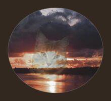 Eyes In The Sky by judygal