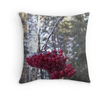 Wrinkly Throw Pillow