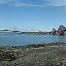 The Forth Bridges by Tom Gomez