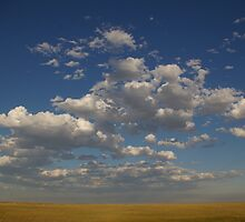 Thuderbasin Horizon, Wyoming by Kathleen Madrid