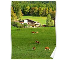 Swiss Countryside Poster