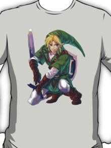 Just... Link.  T-Shirt