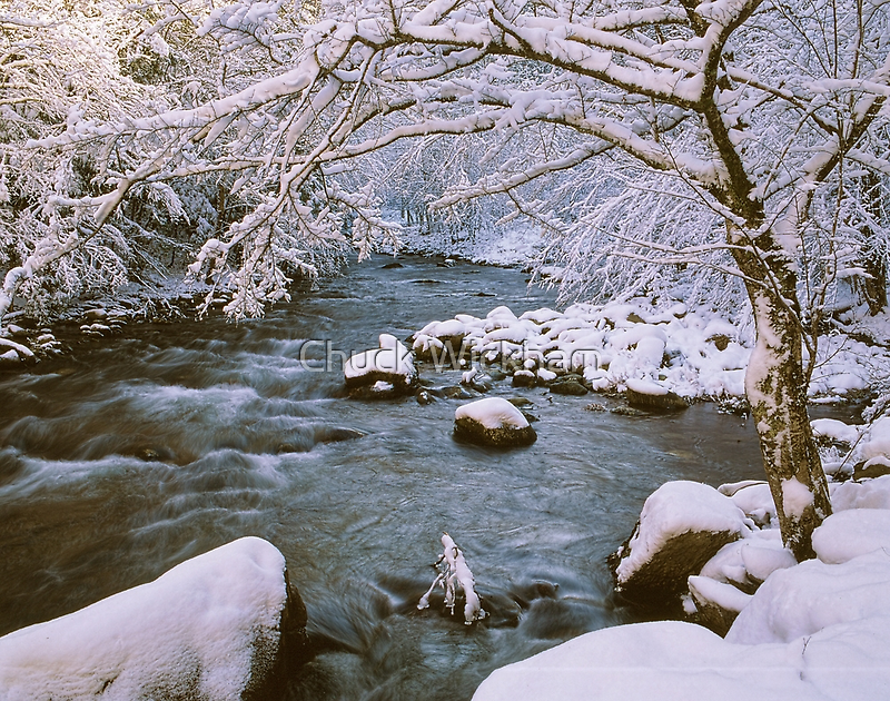 WINTER STREAM by Chuck Wickham