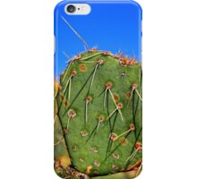 Long Needle Prickly Pear iPhone Case/Skin