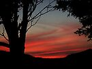 The red sky at night...........! by Roy  Massicks