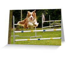 I Believe I Can Fly... I Believe... - Border Collie - NZ Greeting Card