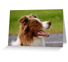 I'm Ready For Duty Master! - Beautiful dog - Southland Greeting Card