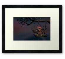 swinging rooster Framed Print