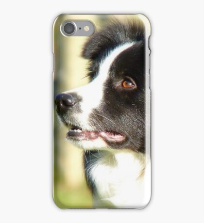 At Your Command I'm Ready For Outrun! - Border Collie - NZ iPhone Case/Skin