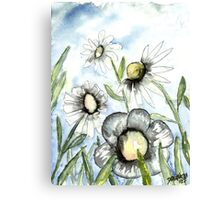 field of white daisy flowers daisies Canvas Print
