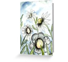 field of white daisy flowers daisies Greeting Card