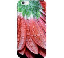 Red Gerbera Flower iPhone Case/Skin