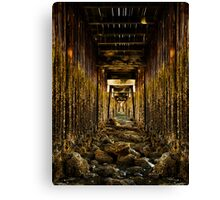 Under the Jetty... Canvas Print