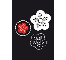 nihon japan blossom #2 Photographic Print