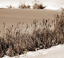 Sepia Frozen Lake by ronibgood