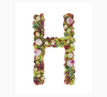 Capital Letter H Part of a set of letters, Numbers and symbols by PhotoStock-Isra