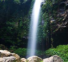 Crystal Shower Falls, Dorrigo, NSW, Australia by Sam Allen