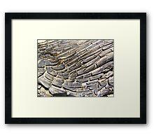 Timber Texture Framed Print