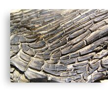 Timber Texture Canvas Print