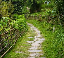 A Path through a Rural Village in Nepal by journeysincolor