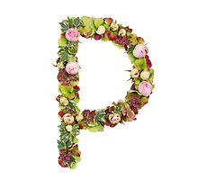 Capital Letter P Part of a set of letters, Numbers and symbols by PhotoStock-Isra