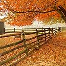 Fall Barnyard by andykazie